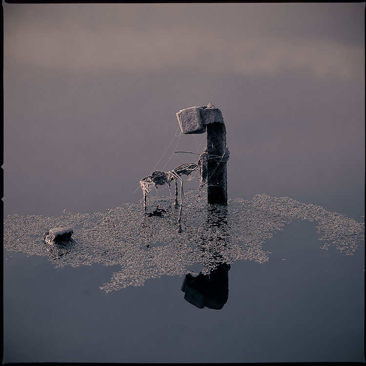 Убрать перископ - пруд железяка тина средний формат обработка квадратное фото фотосайт