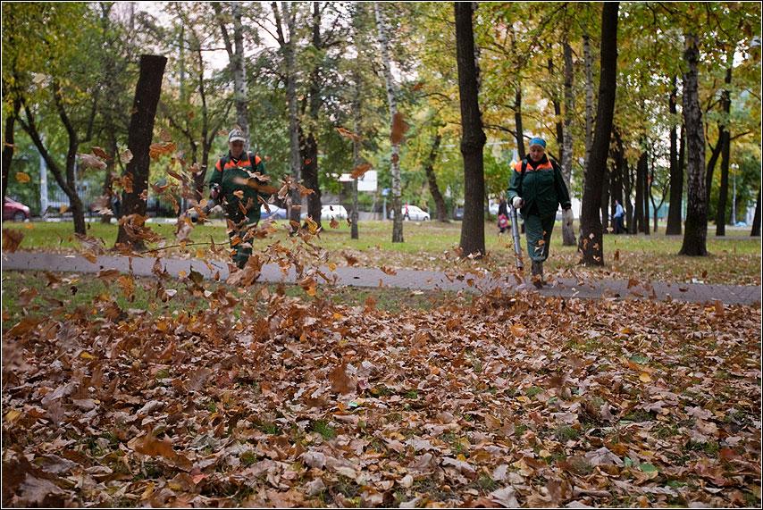 Гнать осень - осень листва времягода дворники дуть ветер фото фотосайт