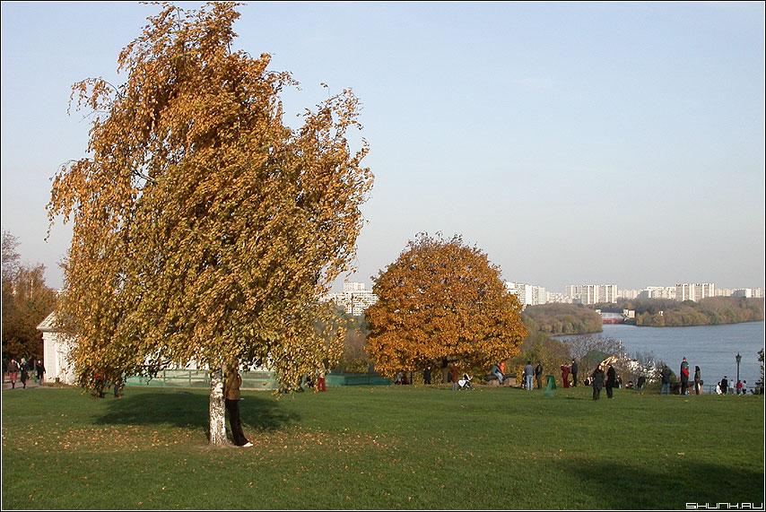 Поляна - Осень поляна коломенское фото фотосайт