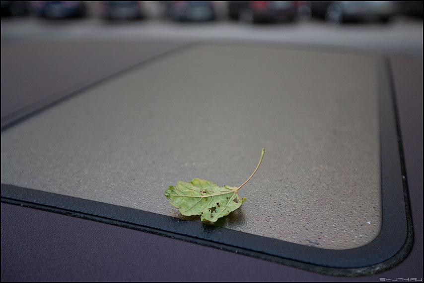 Намек - осень люк авто машины питер элемент фото фотосайт