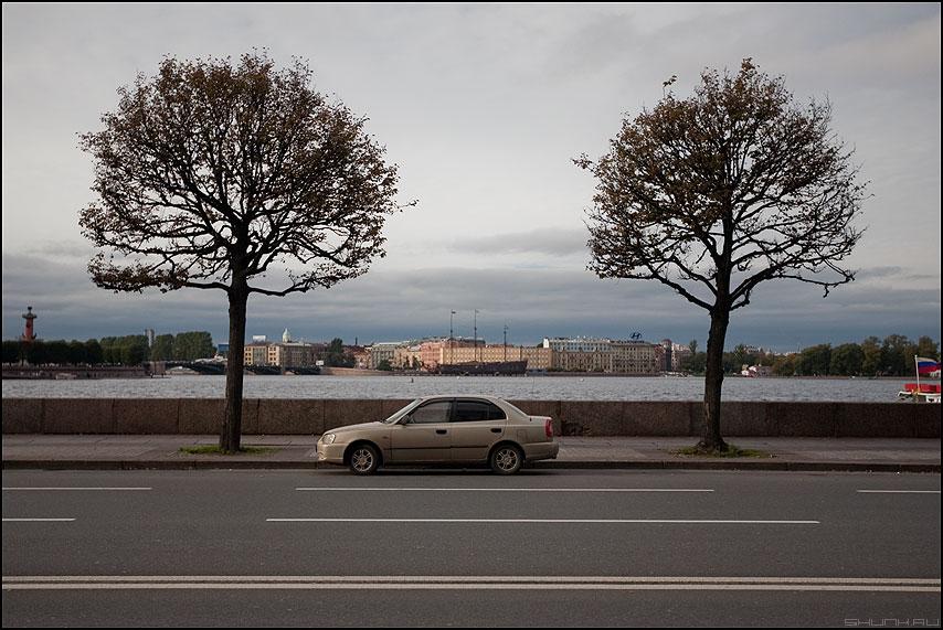 На набережной Невы - машина деревья питер санкт-петербург композиция небо река фото фотосайт