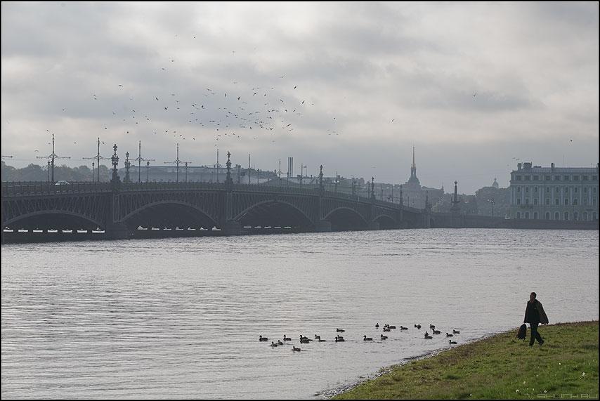 Это свобода - питер санкт-петербург мост остров стая утро нева река мужик зелень трава небо фото фотосайт
