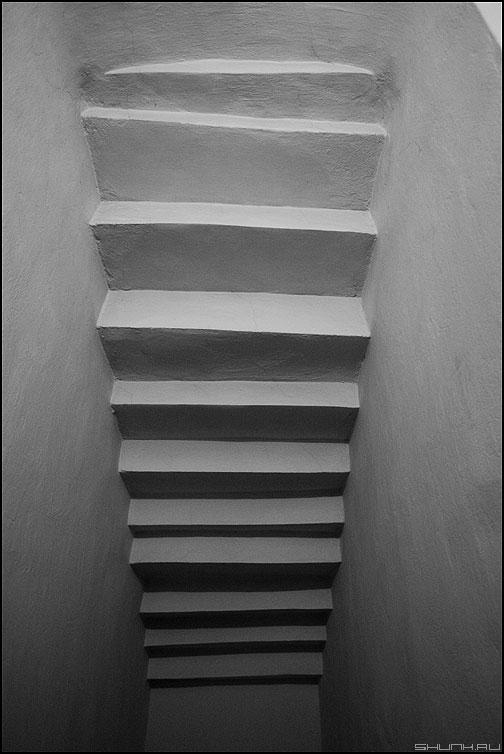 Аппроксимационная теорема Вейерштрасса - теорема ступеньки чёрнобелые стены питер элемент фото фотосайт