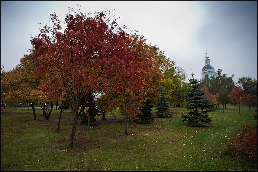 Тема осени - осень церковь крест купол листва пасмурно фото фотосайт