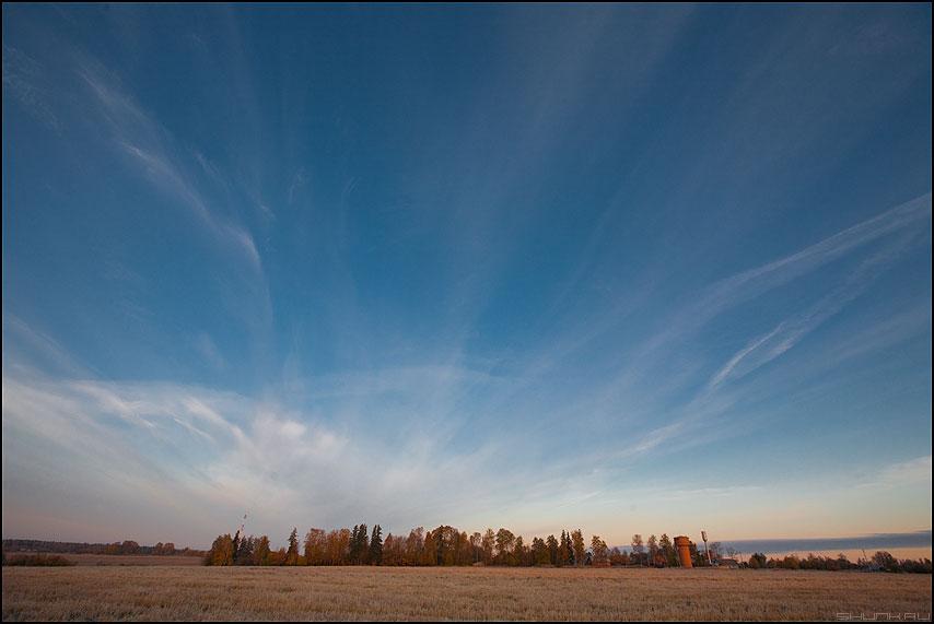 Остров моей юности - остров осень небо деревья ширик 16-35 фото фотосайт