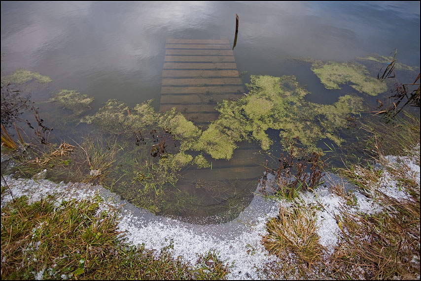Первый снег в моей деревне - деревня пруд мостик шустиково ноябрь осень тина вода снег фото фотосайт