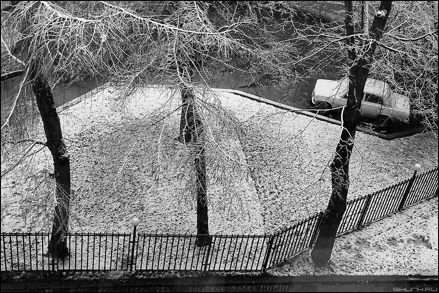 Снег не первой свежести - автомобиль снег деревья изокна уличное фото фотосайт