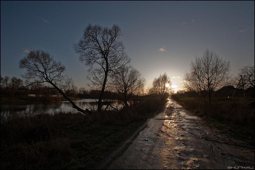 Закатная дорожка - закат деревья деревня лужи осень фото фотосайт