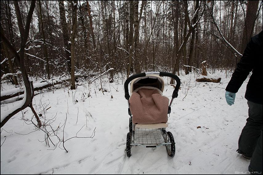Гулять - коляска рука парк зима снег фото фотосайт