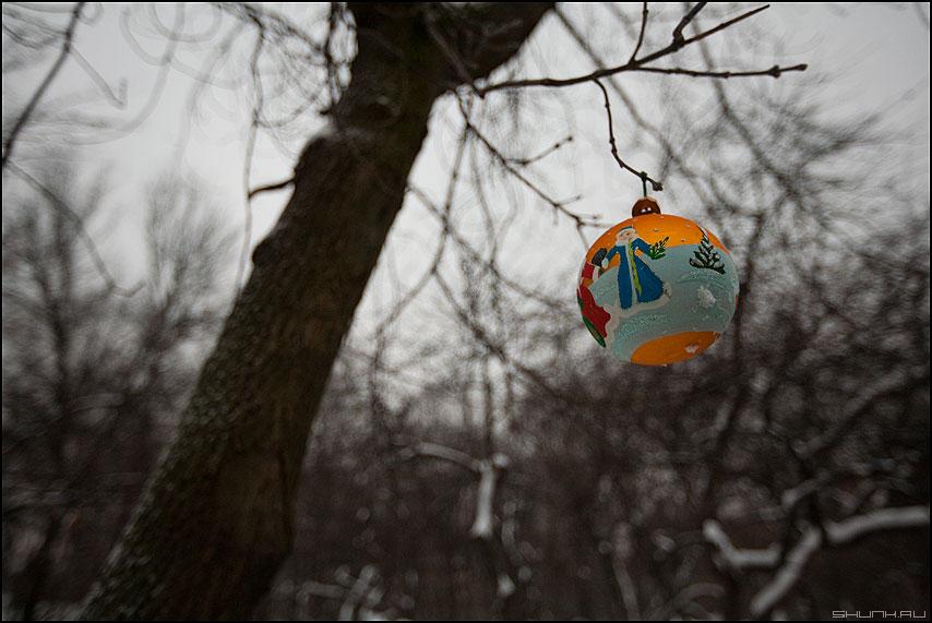 С наступающим 2010 годом! - сновымгодом 2010 шарик новыйгод новогоднее уличное фото фотосайт