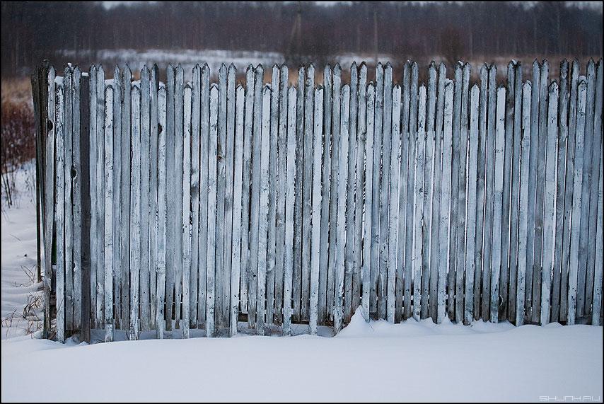 Белый забор - забор деревня снег ильинское штакетник фото фотосайт