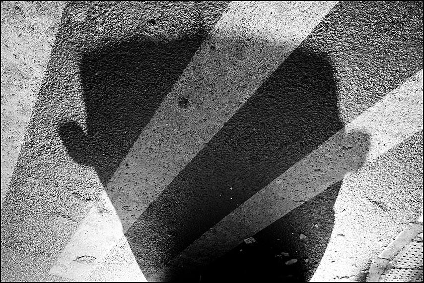 Ушастик - тень полосы переход черноеибелое уличное фото фотосайт