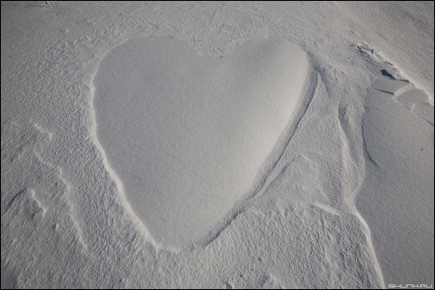 С днем всех влюбленных! - сердце холод зима снег день всех влюбленных фото фотосайт