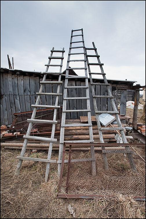 Три лестницы в небо - лестница небо сарай деревня фото фотосайт