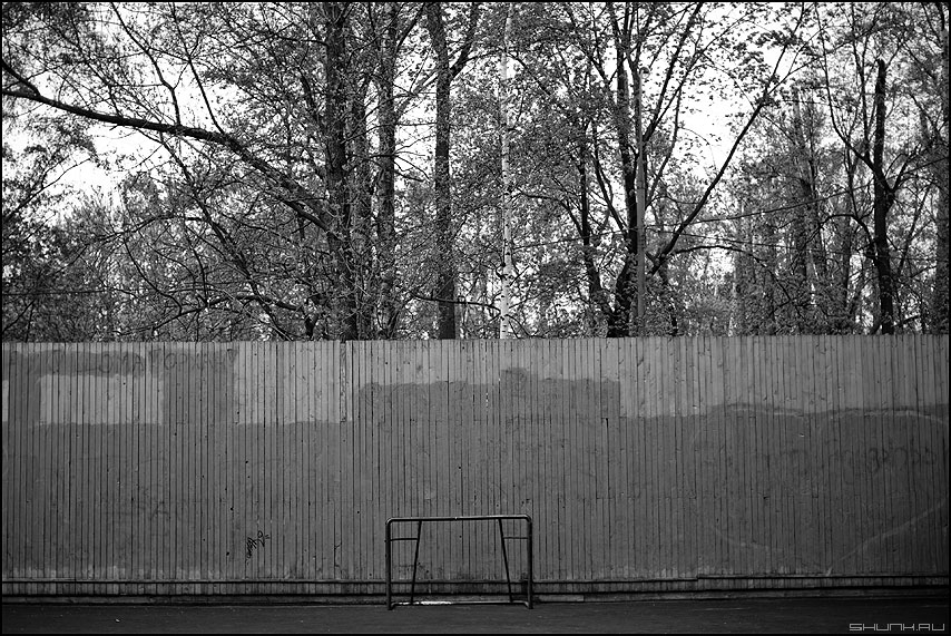 Игра в одни ворота - осень монохром ворота забор деревье настроение фото фотосайт