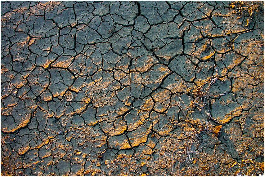 Смерть - земля крым трещины засуха фото фотосайт