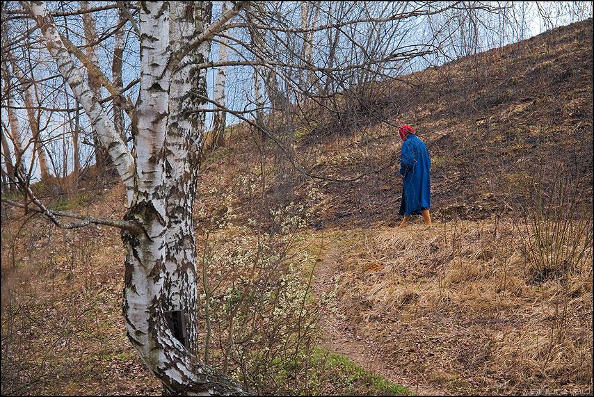 Бабушка - бабушка синее береза деревня холмы небо весеннее фото фотосайт