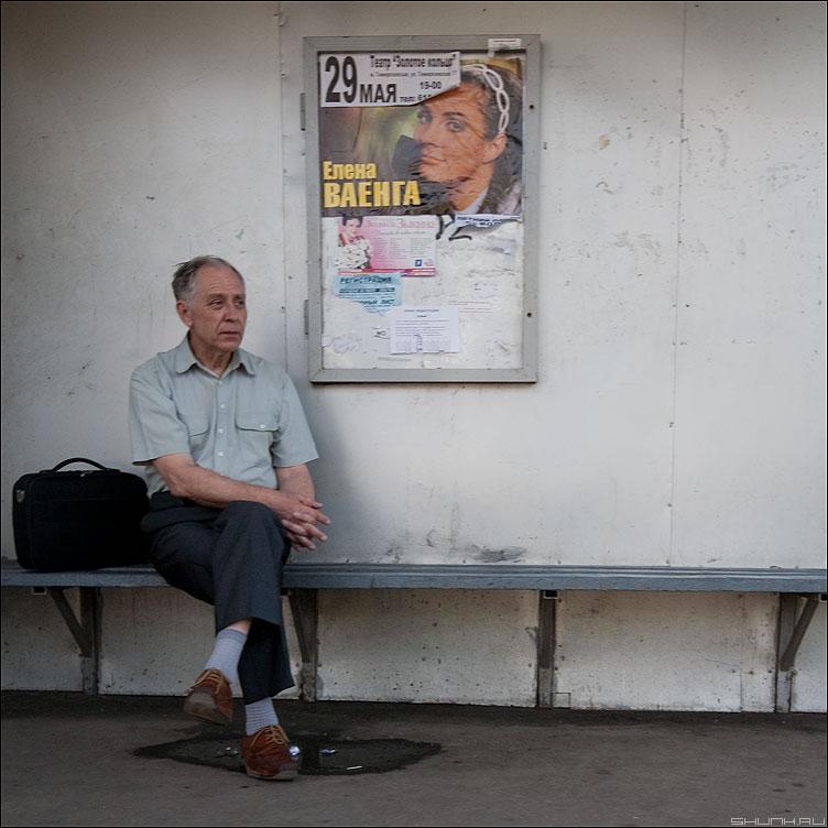 ВАЕНГА - остановка квадратное мужик уличное лавочка реклама ваенга фото фотосайт