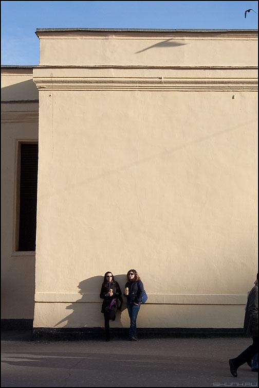 ... им на голову - птичка парочка стена тень площадь революции небо фото фотосайт