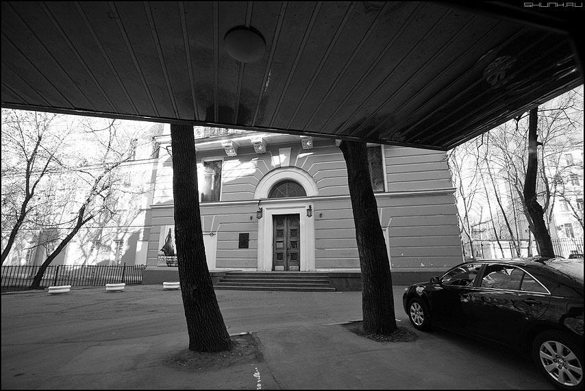 Мир на двух китах - деревья козырек автомобиль ауди музей монохром уличное фото фотосайт