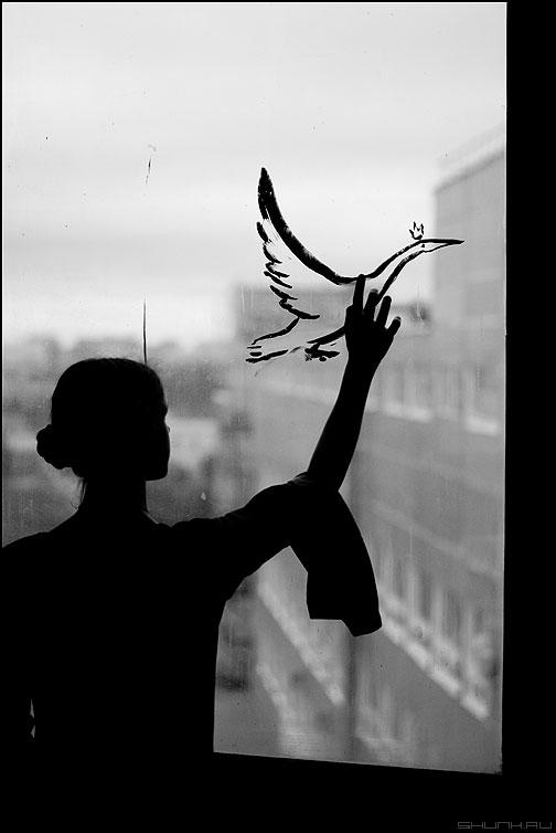 Улететь - птица чб пахмутова кома девушка окно монохром студийное портрет фото фотосайт