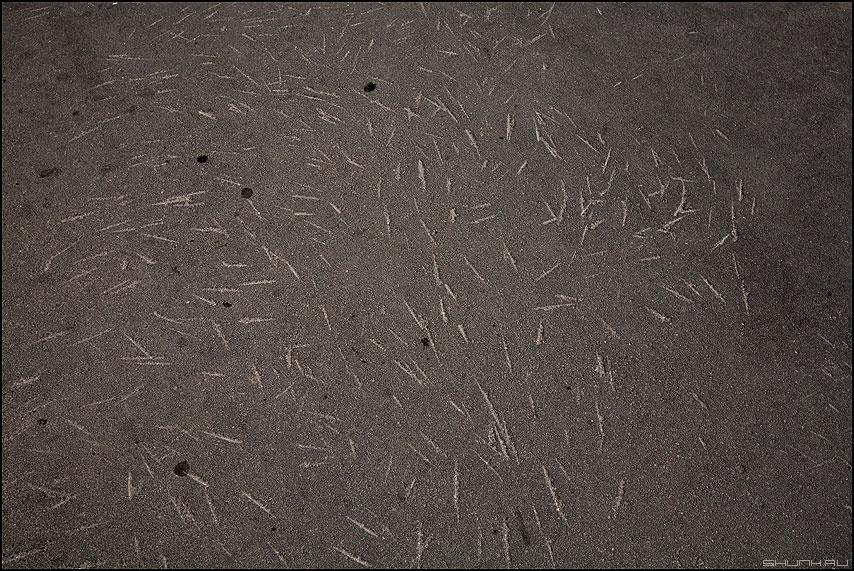 Ледовое побоище - сколы асфальт зимнее штрихи эоементы фото фотосайт