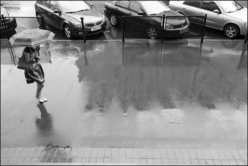 Дождь - дождь уличное лужа зантик монохром девушка сверху фото фотосайт