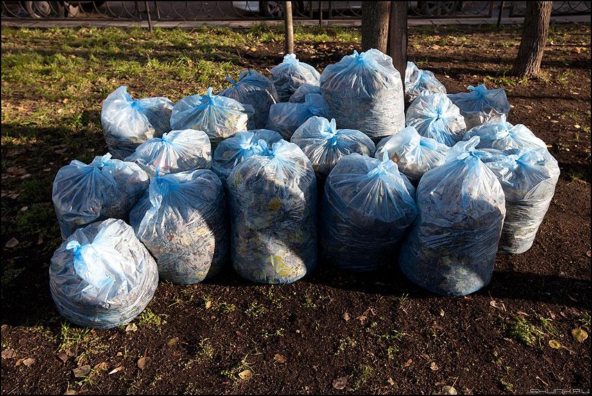 Мешочки - осень листва мешки уличное осеннее элементы фото фотосайт