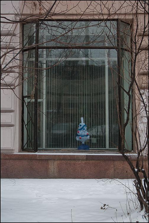 Оформление витрин. Дорого. - елка витрина окно здание уличное фото фотосайт