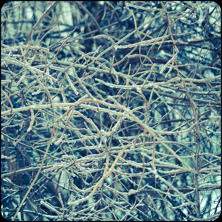 * * * - веточки квадратное обработка зима ледяное хрустальное пересечения фото фотосайт