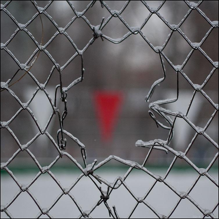 Сердце рабицы - сетка рабица флажок уличное фото фотосайт