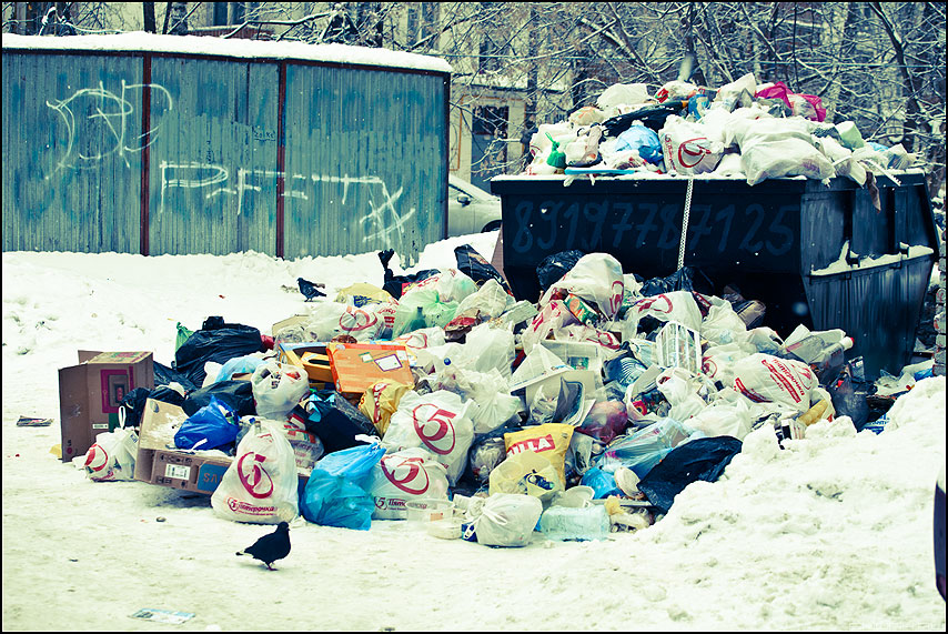 Пятерочка в лидерах - помойка 1-е января январь зима мусор контейнер фото фотосайт