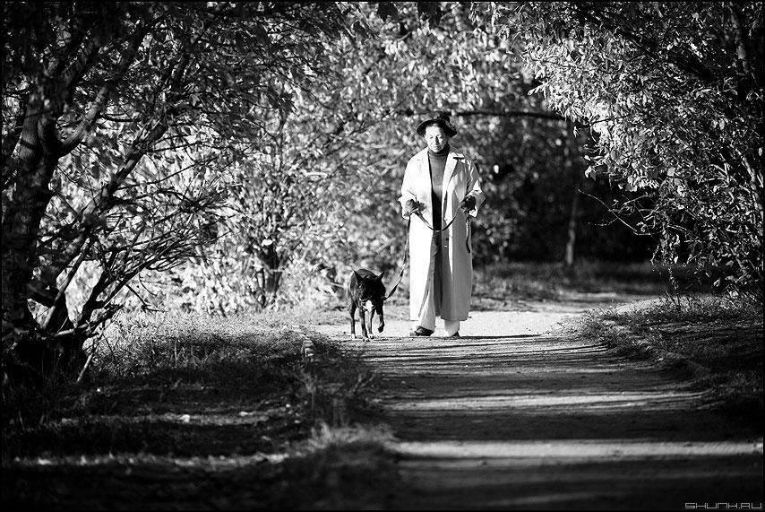 Дама с собачкой - дама собачка монохромное уличное природа кусты фото фотосайт