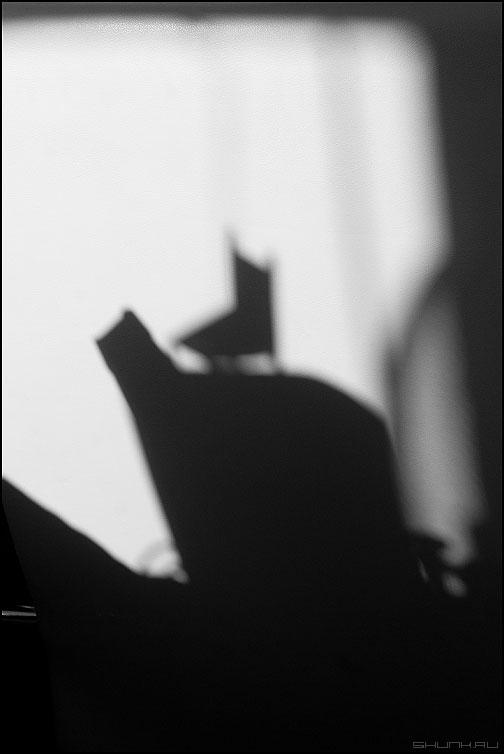 Сказка о том как почти весеннее солнышко рисовало тенями - тени стул монохромное фото фотосайт