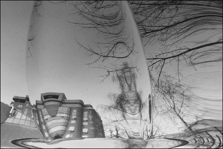 Пятое измерение - отражение деревья монохром здание капот фото фотосайт