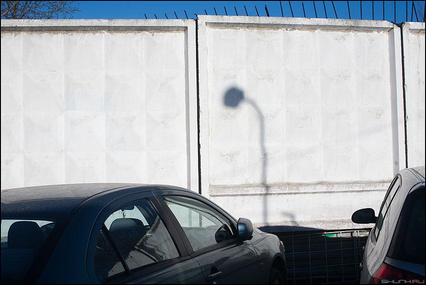 Одуванчик отцвел - тень забор солнечное фото фотосайт