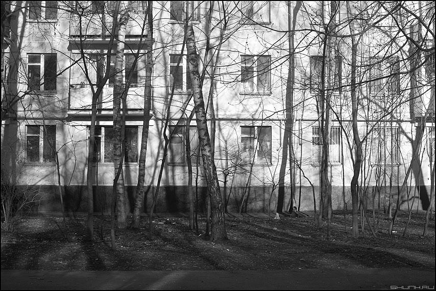 В театре теней сегодня темно - тени дом хрущевка фото фотосайт