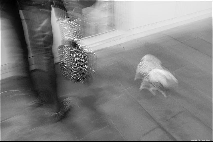 Дама с собачкой - переход смаз уличное дама собачка монохром фото фотосайт