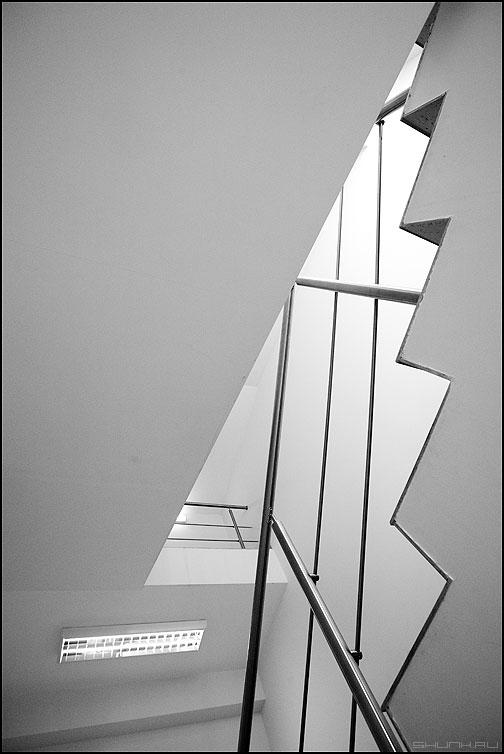 Из лесу елочку взяли мы домой - елочка лестница офисное геометрия фото фотосайт