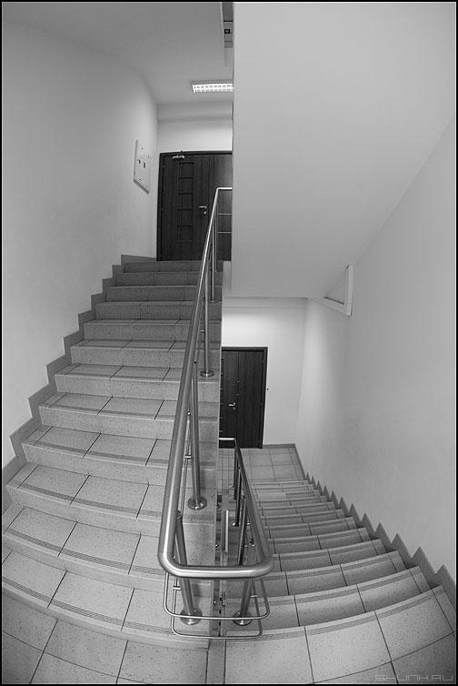 Рыбий взгляд на вещи - лестница фишай монохром офисное фото фотосайт