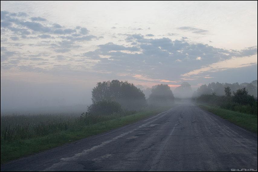 Июльский туман - утро туман дорога деревня 2011 фото фотосайт