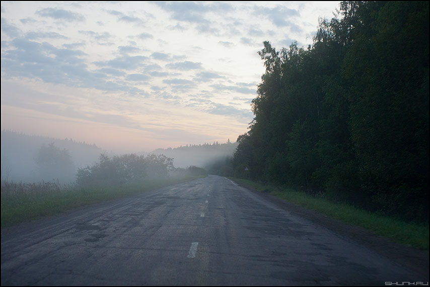 Придорожный туман - утро туман дорога деревня 2011 лес фото фотосайт