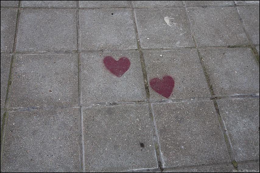 Два сердца закатанные в асфальт - плитка сердца графити уличное фото фотосайт
