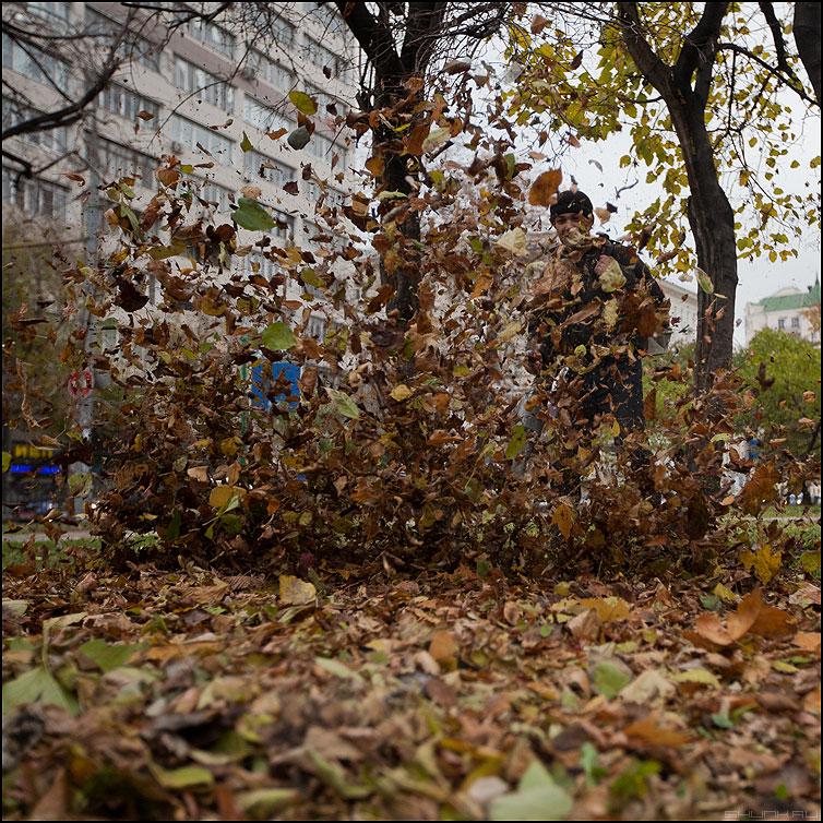 Что такое Осень? - осень листва квадратное гастрабайтер сдувать листья фото фотосайт