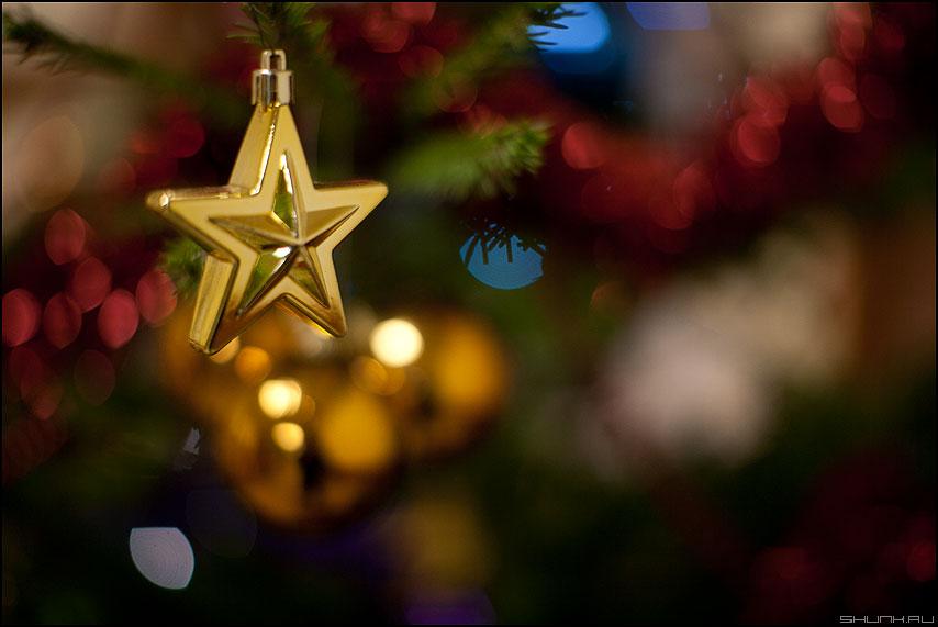 С Новым 2012 годом! - звездочка елка 2010 новыйгод фото фотосайт