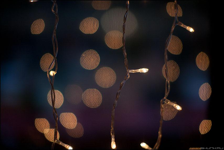 Фонарики горят 2 - фонарики гирлянда 1.2 макро размытие новогодняя фото фотосайт