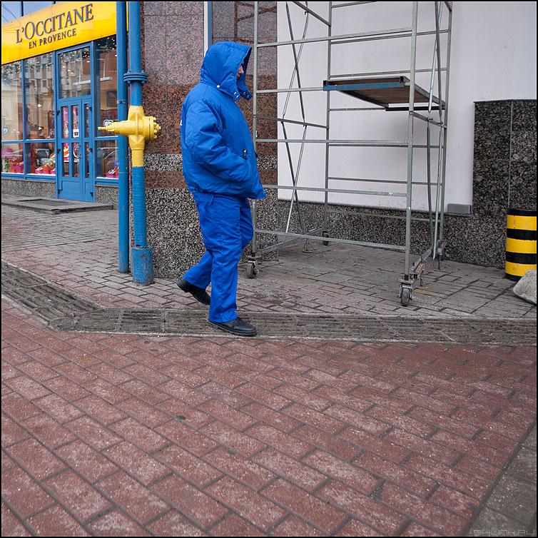 Хамелеон - синее желтое квадратное мужик охранник форма фото фотосайт