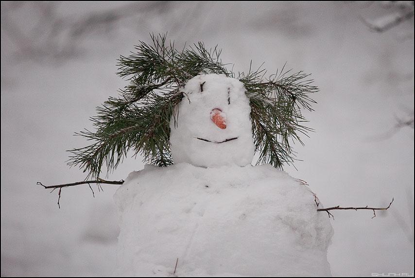 И я гляжу в себя как в зеркало - снеговик зима есенин елка морковка нос фото фотосайт