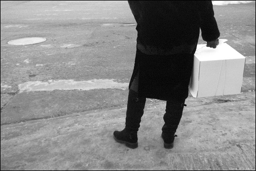 Подарок слону - чёрнобелое подарок коробка уличное силует фото фотосайт