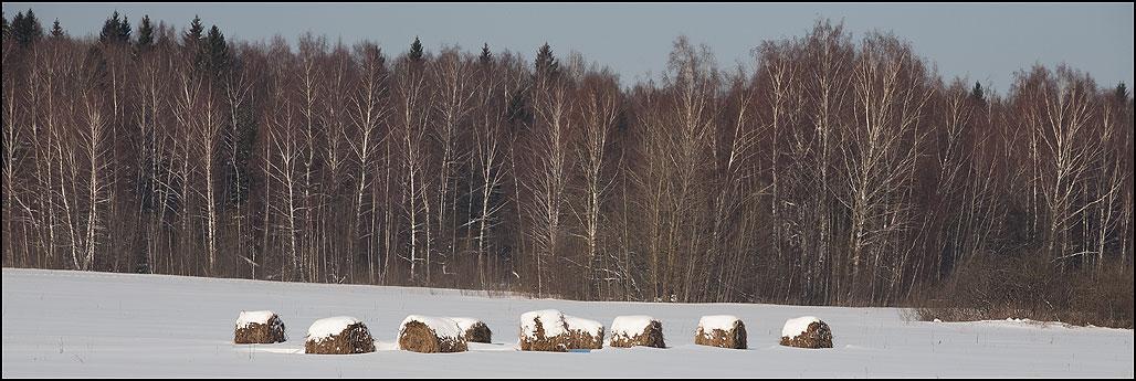 Катушки - деревня зима катушки сено снег лес березы фото фотосайт